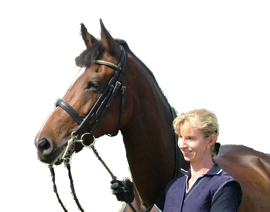 http://www.gemsbrookdressage.co.uk/pb%20copy.jpg